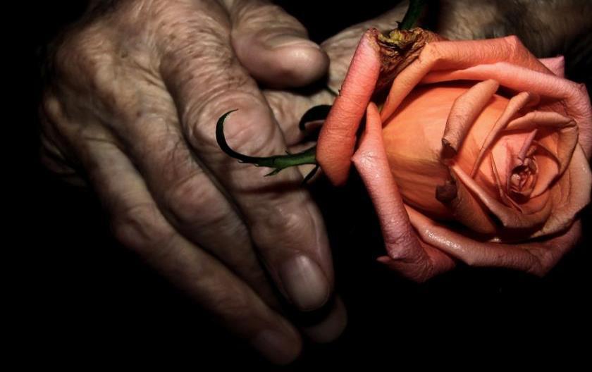 rose_in_hands